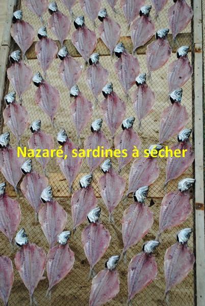60 Nazaré. Sardines à sécher