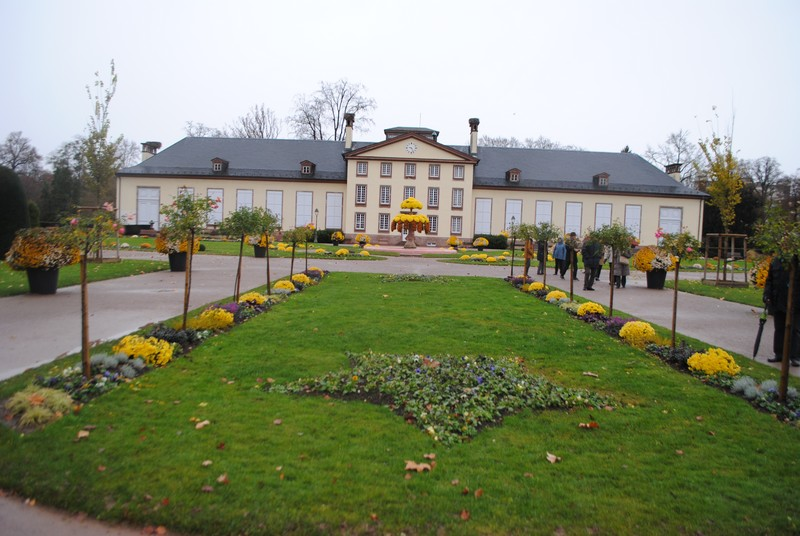 Alsace 433